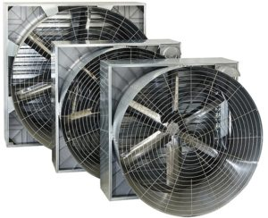 steel-cone-fans-first attrezzature-avicole.com